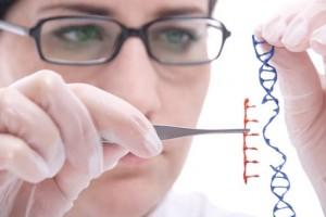 Gene Fruchtbarkeit